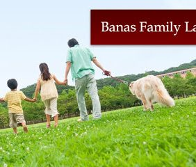 Banas Family Law