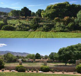 Affordable Landscape...