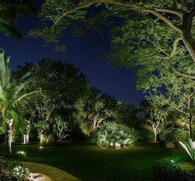 Miami Landscape Ligh...