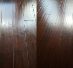 EverClean Carpet Cle...