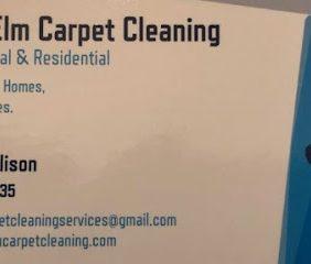 Blue Elm Carpet Clea...