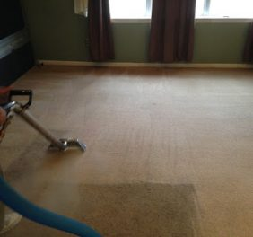 Nelson Carpet Cleaning