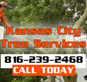 Kansas City Tree Rem...